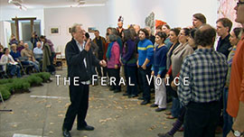 The Feral Voice