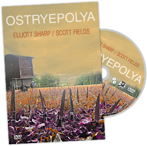 Elliott Sharp / Scott Fields – Ostryepolya DVD